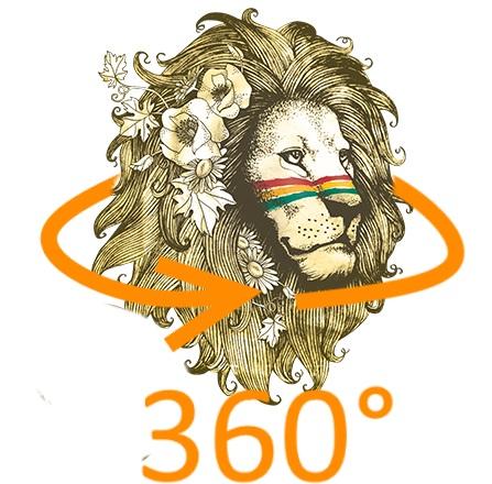 Expert3D couvre le Reggae Sun Ska en vidéo 360° !